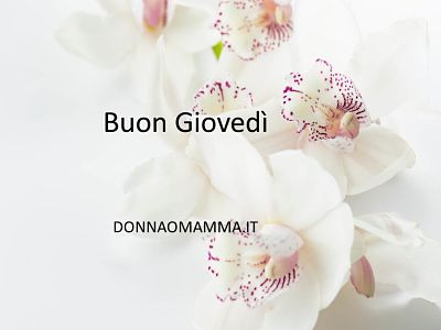 Buon Giovedì Orchidee